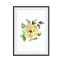The Yellow Rose Print