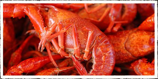 crawfish vs lobsters