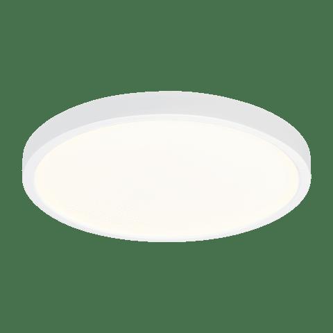 "Traverse - Round 12"", WH White Bulbs Inc"