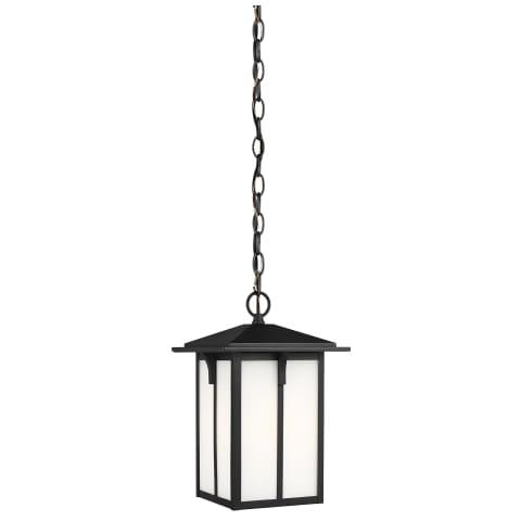 Tomek One Light Outdoor Pendant Black Bulbs Inc