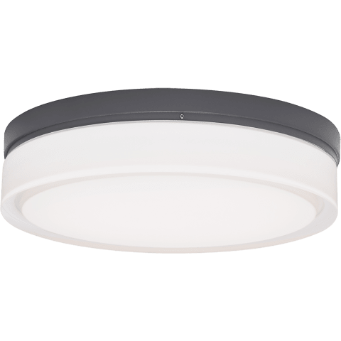 Cirque Small Outdoor Wall/Flush Mount Small charcoal Not Applicable INC