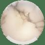 Melange Sconce in Polished Nickel with Alabaster