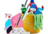 Cleaning Services Business in Mulgrave