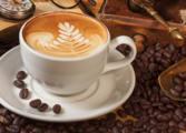 Cafe & Coffee Shop Business in Peregian Beach