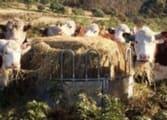 Rural & Farming Business in Armidale