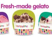 Trampoline Gelato franchise opportunity in Brisbane City QLD