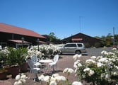 Accommodation & Tourism Business in Pemberton