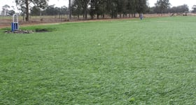 Rural / Farming commercial property for sale at Katunga VIC 3640