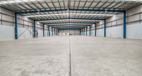Showrooms / Bulky Goods commercial property for lease at 51 Musgrave Road Coopers Plains QLD 4108