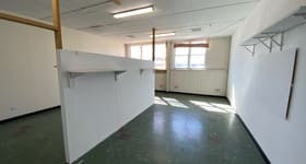 Showrooms / Bulky Goods commercial property for lease at Carrington Road Marrickville NSW 2204