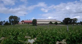 Rural / Farming commercial property for sale at Riddoch Highway Naracoorte SA 5271