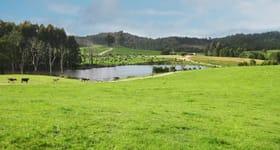 Rural / Farming commercial property sold at Mawbanna TAS 7321