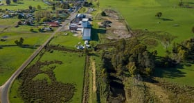 Rural / Farming commercial property for sale at 999 Main Street Legerwood TAS 7263