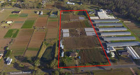 Rural / Farming commercial property for sale at 284 Thirteenth Avenue Austral NSW 2179