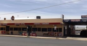 Hotel, Motel, Pub & Leisure commercial property for sale at 82 Napier Deniliquin NSW 2710