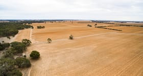 Rural / Farming commercial property for sale at Elmore VIC 3558