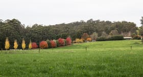 Rural / Farming commercial property for sale at 11 Emphields Track Cabbage Tree Creek VIC 3889
