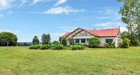 Other commercial property for sale at 6 Theresa Creek Road Millaa Millaa QLD 4886