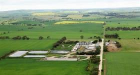 Rural / Farming commercial property sold at 571 Marshall Road Magdala SA 5400