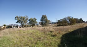 Development / Land commercial property sold at 99 Catherine  Crescent Lavington NSW 2641