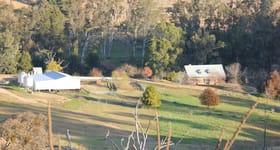 Rural / Farming commercial property sold at Gables, Nanangroe Road Berremangra NSW 2582