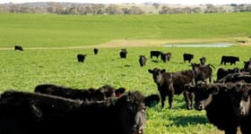 Rural / Farming commercial property sold at 239 White Flag Road Yass NSW 2582