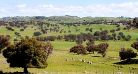 Rural / Farming commercial property sold at Bogolara Road Bookham Yass NSW 2582