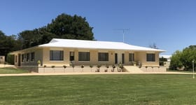 Rural / Farming commercial property for sale at Berkley Estate 675 Cadgee Road Naracoorte SA 5271