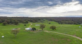 Rural / Farming commercial property for sale at Briarbrook NSW 2365