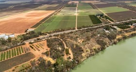 Rural / Farming commercial property for sale at Oxford Landing 1223 Cadell Valley Road Cadell SA 5321