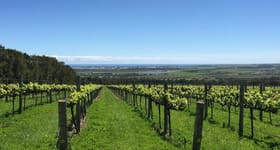 null commercial property sold at Sellicks Hill Vineyard Lot 327 Rogers Road Sellicks Hill SA 5174