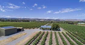 null commercial property sold at Matthews Vineyard 139 Little Road Willunga SA 5172