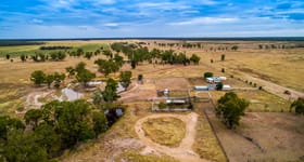 Rural / Farming commercial property for sale at 1369 Booroondoo Road Moonie QLD 4406