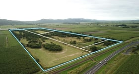 Rural / Farming commercial property for sale at 67722 Bruce Highway Babinda QLD 4861