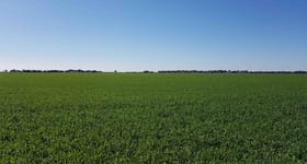 Rural / Farming commercial property for sale at Morundah NSW 2700