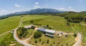 Rural / Farming commercial property sold at 479 Miallo Bamboo Creek Road Bamboo QLD 4873