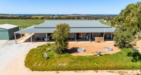 Rural / Farming commercial property for sale at 3729 Westdale Road Beverley WA 6304