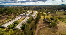 Rural / Farming commercial property for sale at 210 Hawkesbury Road Moggill QLD 4070