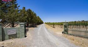 Rural / Farming commercial property sold at 122 Bluebell Lane Murrumbateman NSW 2582