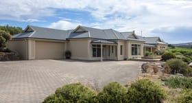 Rural / Farming commercial property for sale at 234 Moritz Road Blewitt Springs SA 5171