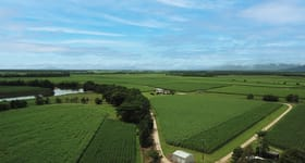 Rural / Farming commercial property for sale at 238 Davidson Road Tully QLD 4854