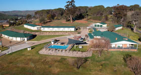Hotel, Motel, Pub & Leisure commercial property for sale at V/101 West Street Gundagai NSW 2722