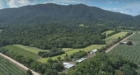 Rural / Farming commercial property for sale at 5 Ohl Road Mission Beach QLD 4852