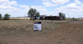 Development / Land commercial property sold at 0 - Surat Sawmill Surat QLD 4417