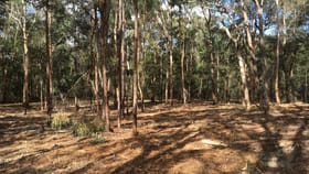 Rural / Farming commercial property for sale at 1006A Comleroy Road Kurrajong NSW 2758