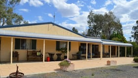 Rural / Farming commercial property for sale at Lot 100 Oxley Highway Collie NSW 2827