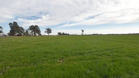 Rural / Farming commercial property for sale at Morrissey Road Stanhope VIC 3623