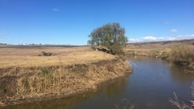 Rural / Farming commercial property for sale at 7/ New England Highway Nobby QLD 4360