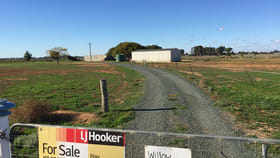 Rural / Farming commercial property for sale at Thelangerin Road Hay NSW 2711