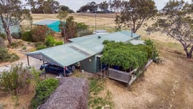Rural / Farming commercial property for sale at 11 Bloomingdale rd Harrogate SA 5244